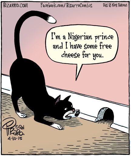 d1f82f89adc28c70b65c84203491a2e4--nigerian-prince-silly-cats